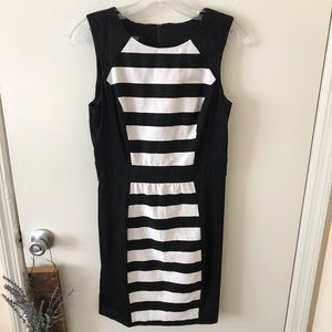 Form Fitting Business Casual dress